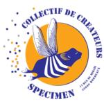 Specimen, boutique de créateurs locaux située à Bordeaux, Gironde 33